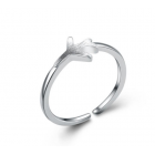 Безразмерное кольцо Plane